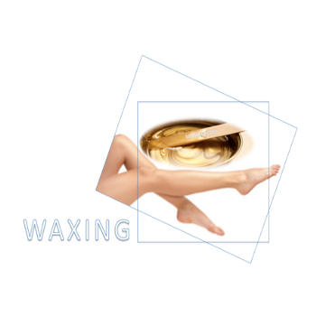 tampa waxing services